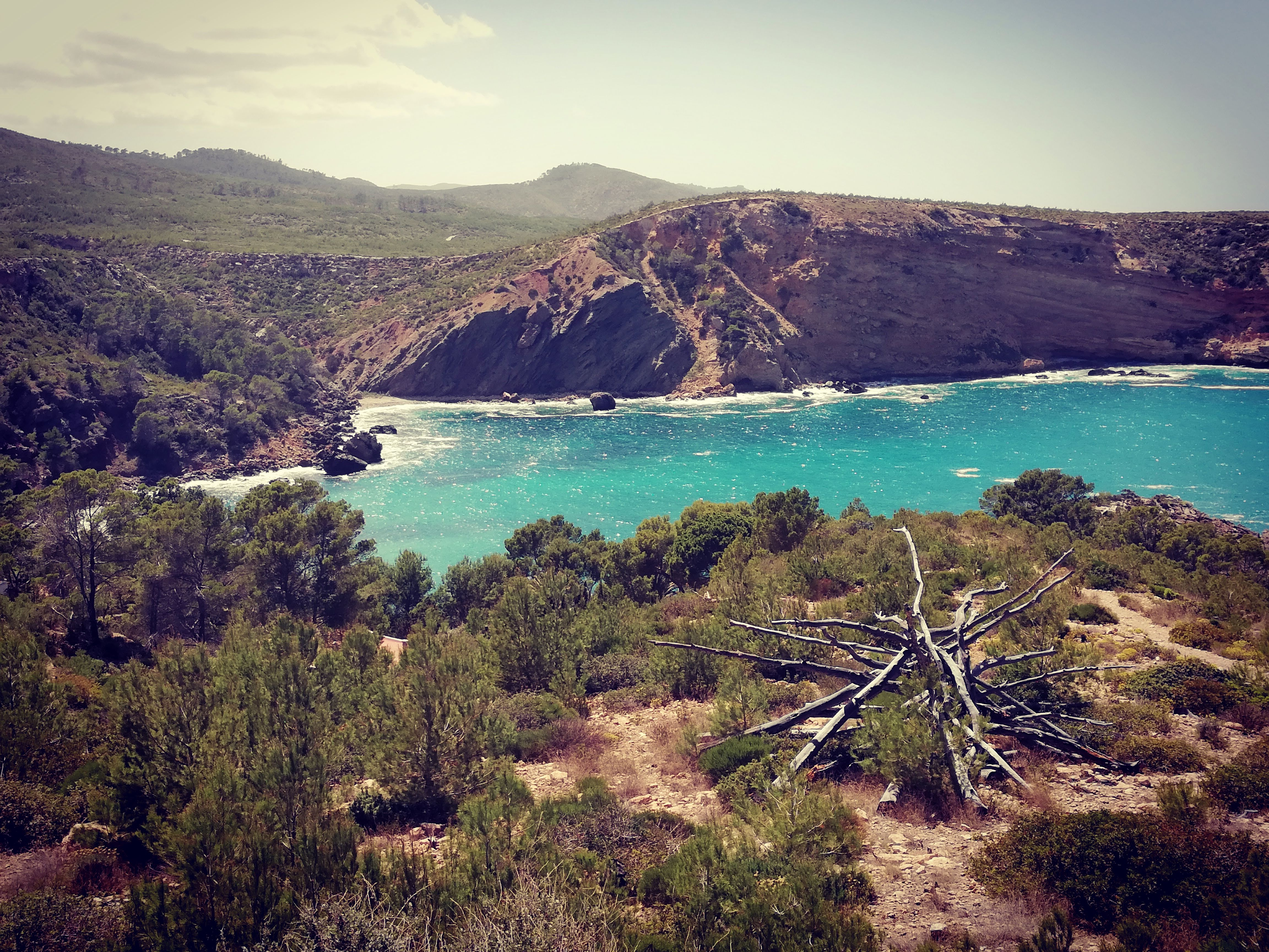 Sei mai stato a Ibiza durante veroño?